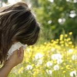 Nothing to sniff at: Dallas one of nation's worst cities for allergies