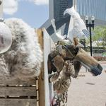 One Spark fills Downtown streets with creators, onlookers