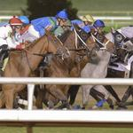 Bills to revive horse-racing industry to gain traction at Texas Legislature