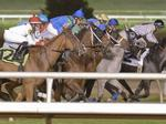 Bills to revive horse-racing industry fail to gain traction at Texas Legislature