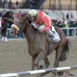 Two Seattle horses, Wicked Strong and Commanding Curve, vying to win Belmont Stakes