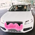 Taxi company owners helped pass regulations on services like Lyft