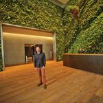 Habitat Horticulture works with Facebook, Tishman Speyer, SFMOMA and others