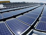 Will 'solar gardens' take root in Minnesota?
