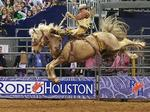 Update: Houston Livestock Show and Rodeo's educational commitments up slightly this year