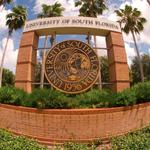 USF drives research gains