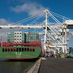 West Coast ports halt activity