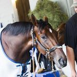 Fourth place in Kentucky Derby for horse owned by Beverly group