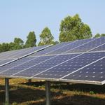 Catt County $21.6 million solar energy project emerges