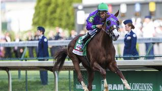 How much do you typically bet on the Kentucky Derby?