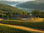 California's Jackson Family Wines buys another prominent Oregon winery