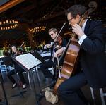 Image of the Day: Symphonic Quartet