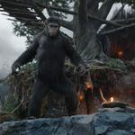 Box-office preview: 'Planet of the Apes' poised to 'Dawn' in top spot