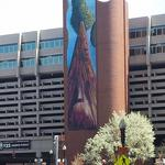 A tree grows on Government Center Garage