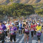 Sports in Hawaii: Are we playing to win?