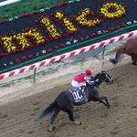 The sprint is on to lure more people to the horse track