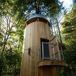 Made in WNY: Buffalo Treehouse (Video)