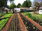 Edible Portland names 6 sustainable food 'heroes'