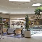 Vandalism, shoplifting and porn — A Vallco mall memoir