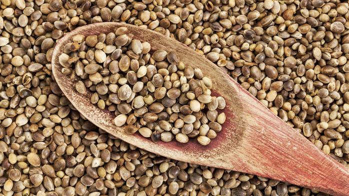 N.C. A&T to showcase commercial uses of industrial hemp