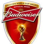 Anheuser-Busch InBev praises FIFA head's resignation