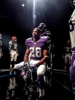 Adrian Peterson jersey sales soar on growing national popularity