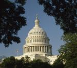 Online tax bill heads to the House