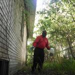 The lifecycle of the Jacksonville pest control industry