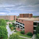WSU names nine new Koch Scholars