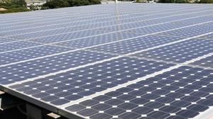Hawaii solar industry watching ITC, Trump, on tariff