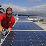 Majority of Hawaii solar energy firms reporting job losses, report says