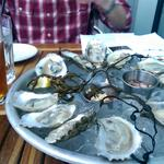 A boom for Maryland: Oyster farming