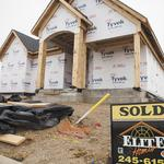 National home builder buys 80 acres in Westchase