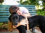 2017 People First HR Awards: Southeastern Guide Dogs