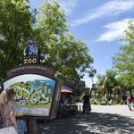 <strong>Denver</strong> auditor's zoo report find issues with board of directors, use of recycled <strong>water</strong>