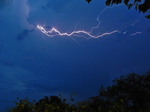 USF researchers have striking new data on the power of lightning