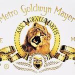 MGM borrows $300 million