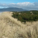 'Pristine' Oregon property sale could lead to the Coast's next state park