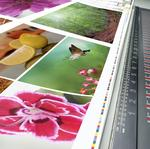 ​4 ways your small business can benefit from online printing