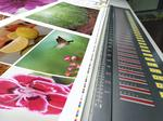 4 ways your small business can benefit from online printing