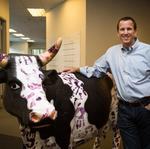Netsertive raises $15M, CEO pledges to keep hiring