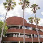 Jersey College relocates to facility on Queen Palm Drive