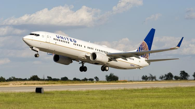United Airlines Apologizes After Dog Dies In Overhead Compartment