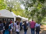 Police plan for 85,000 at 80th Dogwood Festival; Road closings, towing