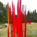 9News: Stolen <strong>Chihuly</strong> art found in Colorado cornfield