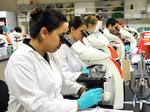 See where Orlando ranks for STEM job salaries