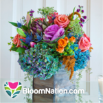 Spark Capital-backed BloomNation raises another $5.5M for florist service