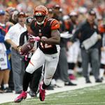 Here's why Bengals tickets are a bargain this year