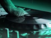 Techno music whiz kid Ashworth created the disco edition of the Meow Mix jingle.