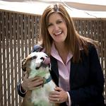 How did she turn a plane crash and two flops into a $71M company? Dogs